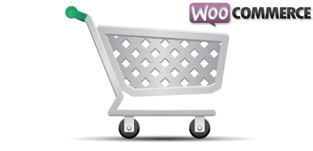 customize woocommerce theme & plugin development