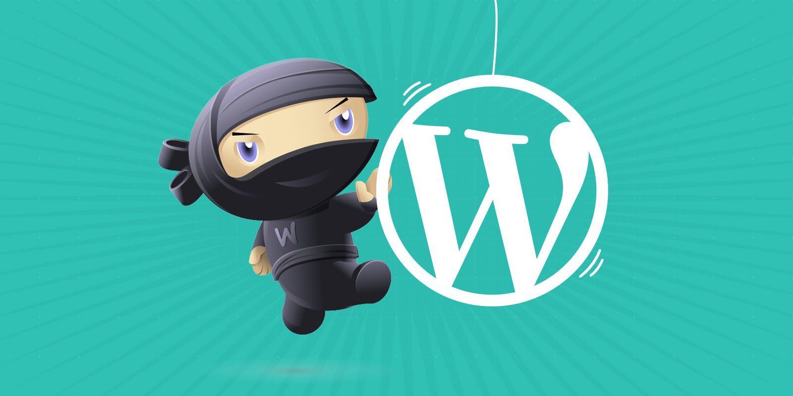 WooCommerce Theme & Plugin Customization