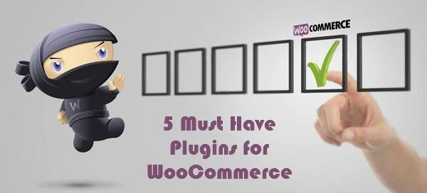 5 Incredible Premium WooCommerce Plugins